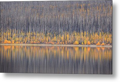 Metal Print featuring the photograph Abstract Autumn by Al Swasey