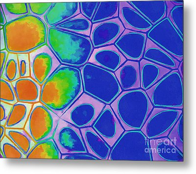Abstract Cells 3 Metal Print by Edward Fielding