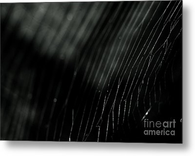 Metal Print featuring the photograph Abstract Cobweb by Yurix Sardinelly