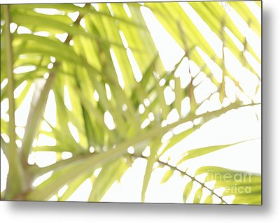 Abstract Foliage Metal Print by Gaspar Avila