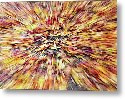 Metal Print featuring the photograph Abstract Leaves 1 by Rebecca Cozart