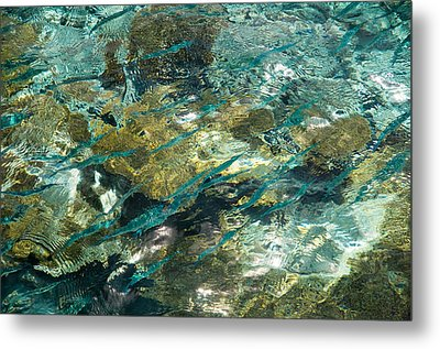 Abstract Of The Underwater World. Production By Nature Metal Print by Jenny Rainbow
