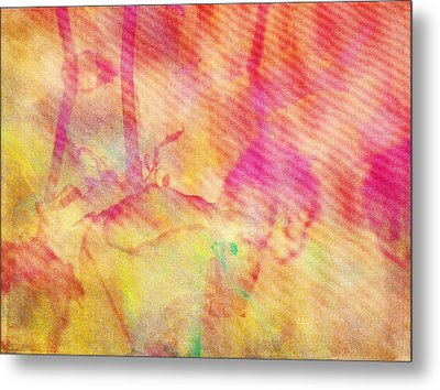 Metal Print featuring the photograph Abstract Photography 003-16 by Mimulux patricia no No