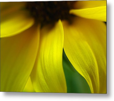 Abstract Sunflower Metal Print by Juergen Roth