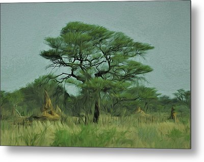 Metal Print featuring the digital art Acacia Tree And Termite Hills by Ernie Echols
