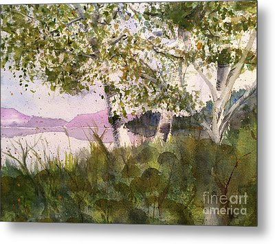 Acadia Morning Metal Print by Maura Satchell