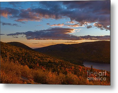 Acadia Sunset Metal Print by Sharon Seaward