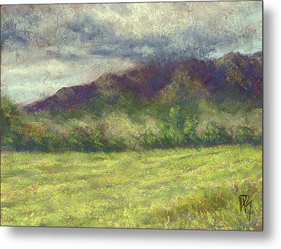 Across The Acres Metal Print by David King