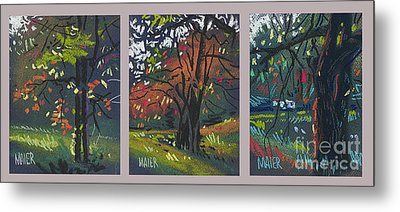 Across The Creek Triplet Metal Print by Donald Maier