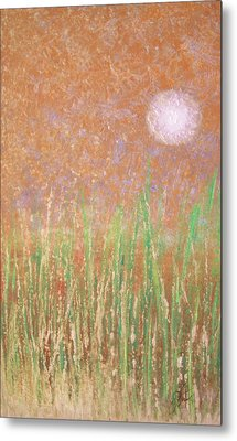 Across The Marsh Metal Print