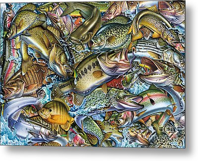 Action Fish Collage Metal Print by Jon Q Wright JQ Licensing