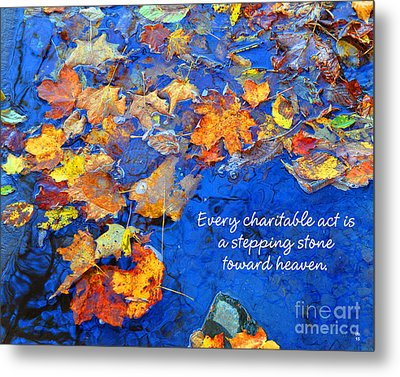 Metal Print featuring the photograph Adironack Laughing Water Charity by Diane E Berry