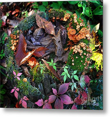 Adirondack Autumn Bouquet Metal Print