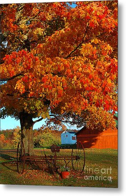 Metal Print featuring the photograph Adirondack Autumn Color by Diane E Berry
