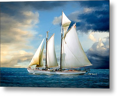 Adventure Metal Print by Fred LeBlanc