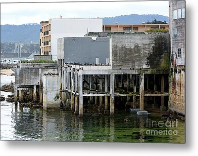 Metal Print featuring the photograph Aeneas Ruins In Springtime At Cannery Row by Susan Wiedmann