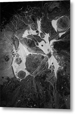 Aerial Photo Vulture Beak Yawn Metal Print