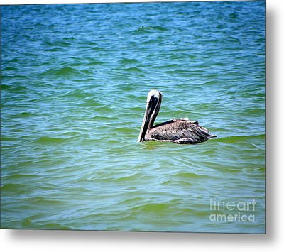 Metal Print featuring the photograph Afloat by Terri Mills