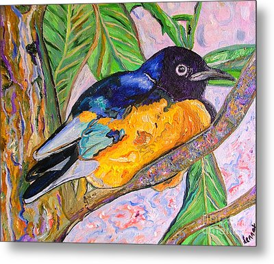 African Blue Eared Starling Metal Print by Heather Lennox