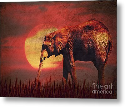 African Elephant Metal Print by Angela Doelling AD DESIGN Photo and PhotoArt