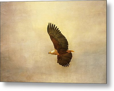 Metal Print featuring the tapestry - textile African Fish Eagle by Kathy Adams Clark