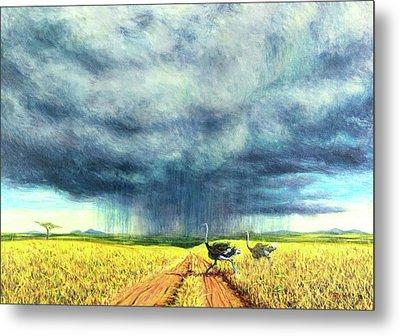 African Storm Metal Print by Tilly Willis