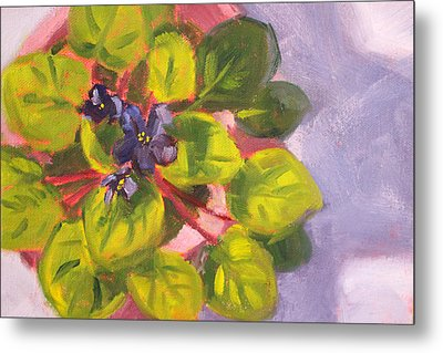 African Violet Still Life Oil Painting Metal Print