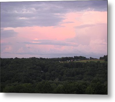After The Rain Metal Print by Marcia Crispino
