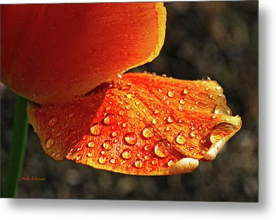 After The Rain Metal Print by Mick Anderson