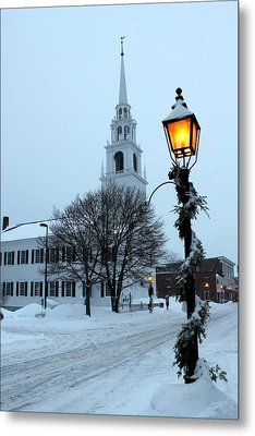 After The Snowfall Metal Print by Suzanne DeGeorge