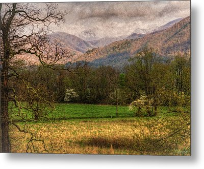 After The Spring Rain Metal Print by Rebecca Hiatt