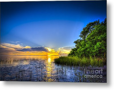 After The Storm Metal Print by Marvin Spates
