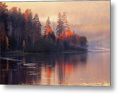 Metal Print featuring the photograph Afterglow by Vladimir Kholostykh
