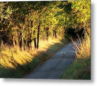 Afternoon Delight Metal Print by Michael L Kimble