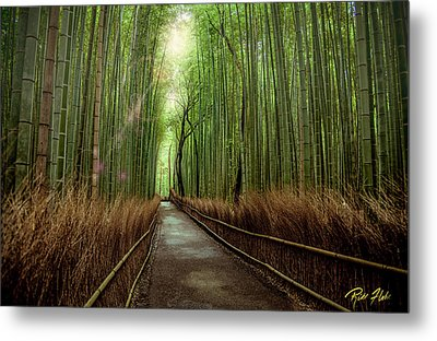 Afternoon In The Bamboo Metal Print