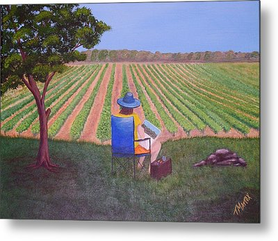 Afternoon In The Vineyard Metal Print