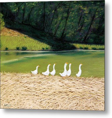 Afternoon On Goose Pond Metal Print