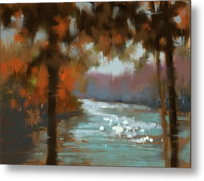 Afternoon Sparkle Metal Print by Donna Shortt