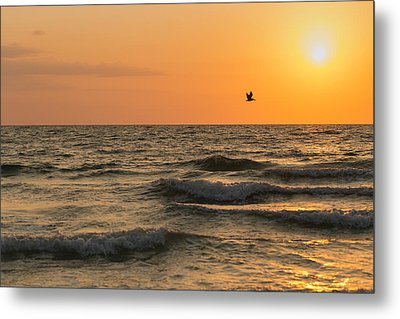 Against The Wind Metal Print by Christopher L Thomley