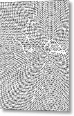 Aibird Metal Print by Robert Thalmeier