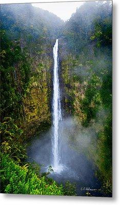 Akaka Falls Metal Print by Christopher Holmes