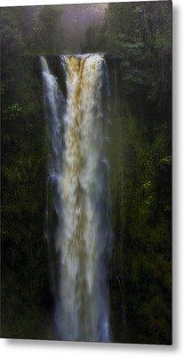 Metal Print featuring the photograph Akaka Falls by Ellen Heaverlo