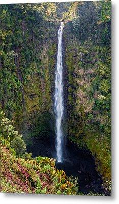 Akaka Falls - The Big Island Hawaii Metal Print by Brian Harig