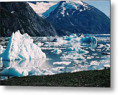 Alaska In The Spring Metal Print by Judyann Matthews