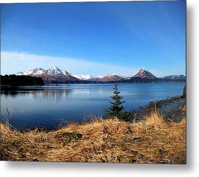 Alaska Lake Metal Print by Kevin Hill