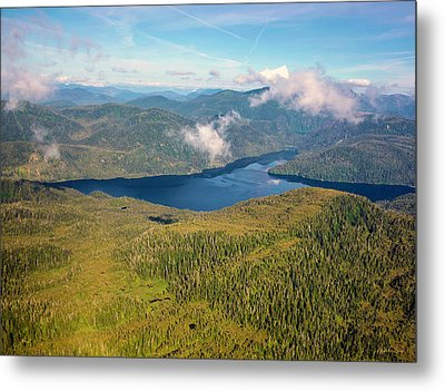 Metal Print featuring the photograph Alaska Overview by Madeline Ellis