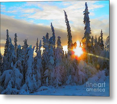 Alaska Winter High Noon Metal Print by Adam Owen