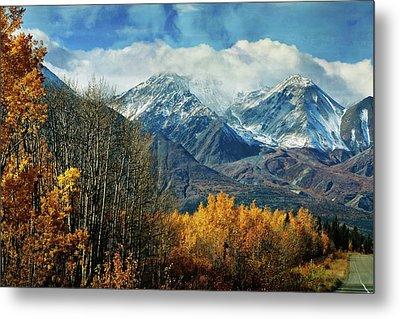 Alaskan Fall 1 Metal Print by Marty Koch