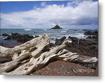 Alau Islet, Driftwood Metal Print by Ron Dahlquist - Printscapes