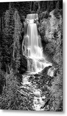 Metal Print featuring the photograph Alexander Falls - Bw 1 by Stephen Stookey